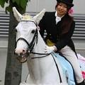 写真: 川崎競馬の誘導馬05月開催 誕生日記念レースVer-05-large
