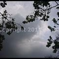 Photos: P2680599