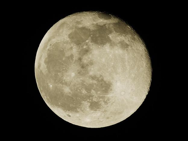 Photos: 「満月+1日」 2010_10_24 P1250488_R.jpg