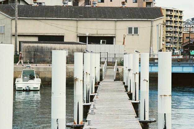 Photos: 桟橋と