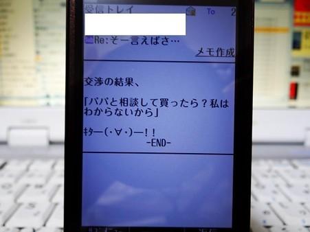 DSC04695_R