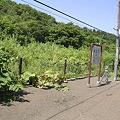 写真: 緑駅8