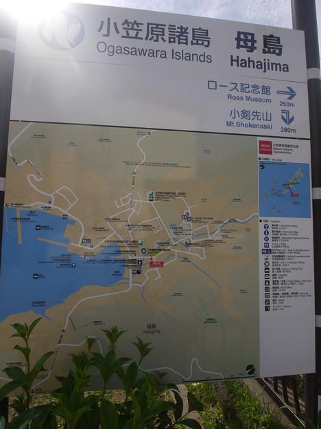 母島MAP