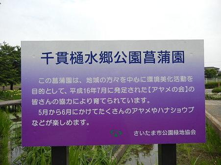 千貫樋水郷公園 (7)