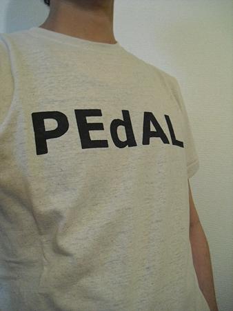 PEdAL.E.D