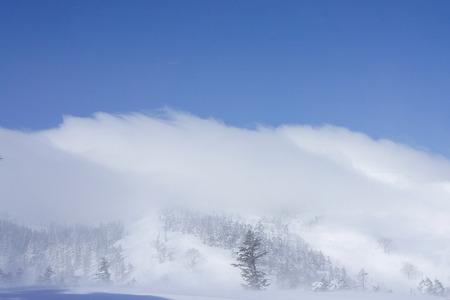 強風!舞う粉雪