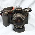 Photos: Canon EOS10 ※