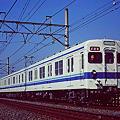 Photos: 81119 19950206
