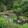 写真: 長谷寺庭園