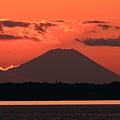 富士と大仏