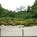 明月院の石庭
