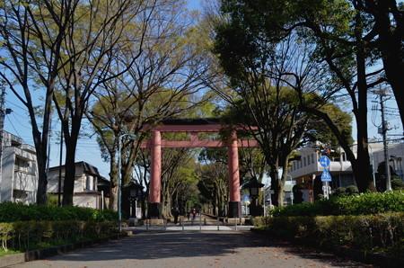 氷川神社(さいたま市)・二の鳥居