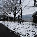 写真: 宮崎市でも初雪4