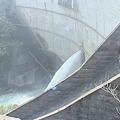 Photos: 一ツ瀬川水系一ツ瀬ダムへ6