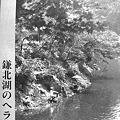 Photos: 鎌北湖のヘラブナ