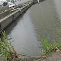 写真: 土浦旧港