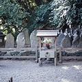 Photos: 平家一門の墓
