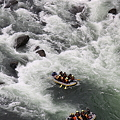 The rafting in the Tone river!