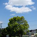 写真: 20100515_130548