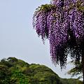 Photos: 20110502_153158