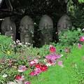 2012年6月6日 般若寺 (7) 夏のコスモスと石仏