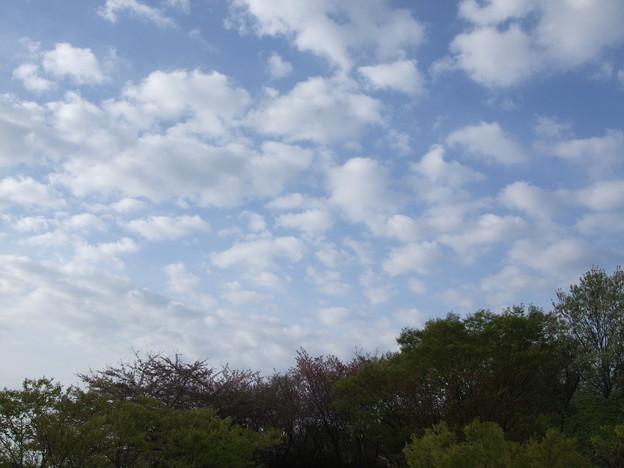 浮雲!その2