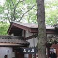 Photos: 玉乃屋さん