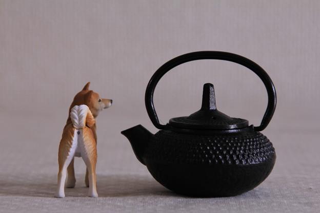 南部鉄器 水差し × 秋田犬(おしり)
