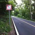 写真: 藻岩山観光道路