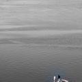Photos: Wharf