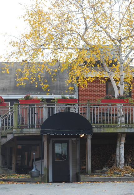 Photos: Bistro with a Birch Tree