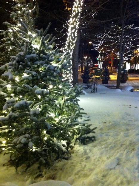 Photos: Snow...