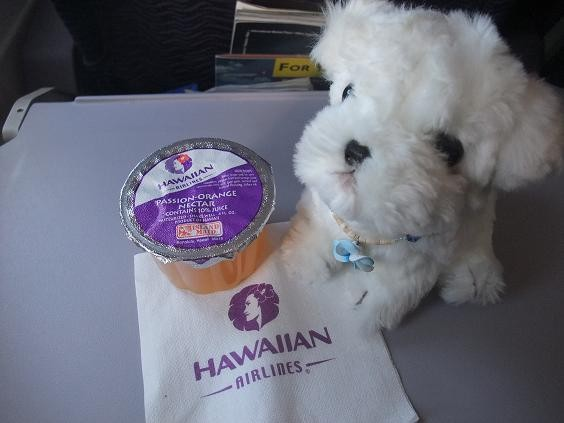 ハワイアン航空機内