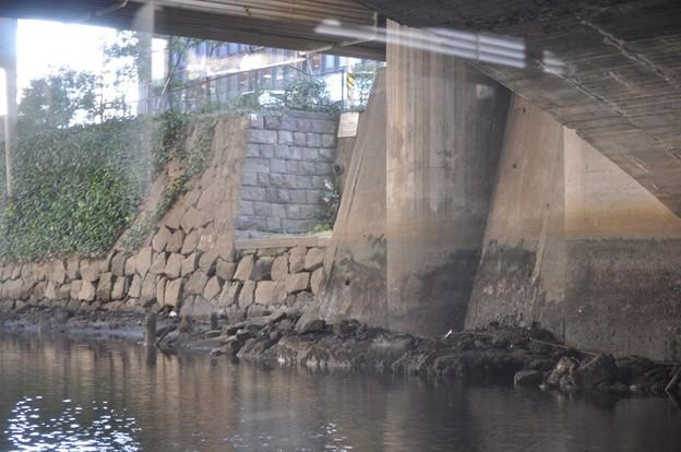 Tokyo水辺エコツアー@日本橋川_神田船着場の名残_DSC_5719
