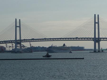 100322-大桟橋 客船2隻 (28)