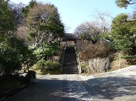 110225-東慶寺  (3)