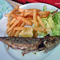 メイン「本日の魚」