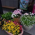 Photos: 20110617_175138
