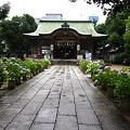 雨上がりの神社。。