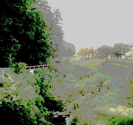 2010.08.11 和泉川 ノイズモードSQ30m