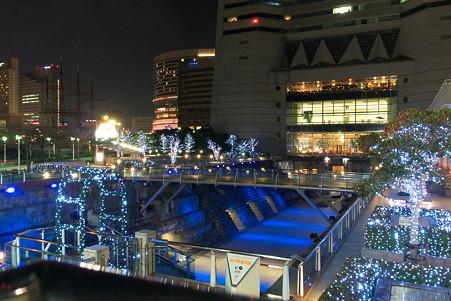 2011.01.15 みなとみらい ドックヤードガーデン