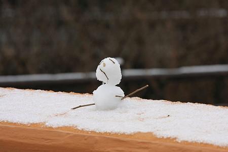 2011.02.12 和泉川 欄干に雪だるま