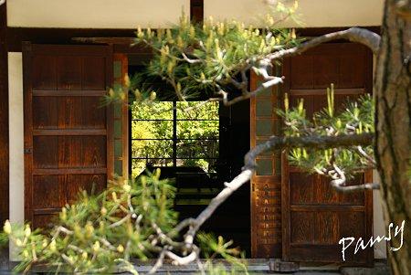 奈良 薬師寺にて・・1