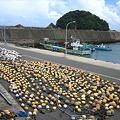 Photos: 天日干し・漁ブイ・・・。
