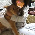 Photos: 連れて帰ってる~~~!