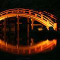 Photos: 反橋のライト!(100430)