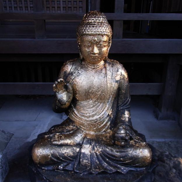【東京|神社仏閣】 大円寺 (89)