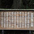 Photos: 110510-50琵琶の滝の由来