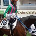 Photos: 5Rソールデスタンと戸崎圭太騎手(1着)