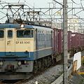 写真: pf1041-20090710